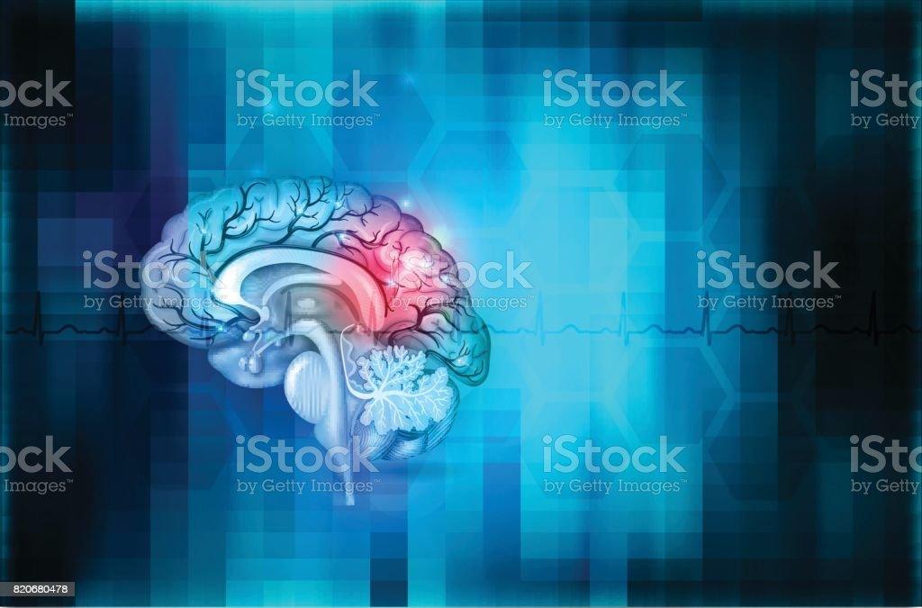 Brain background vector art illustration