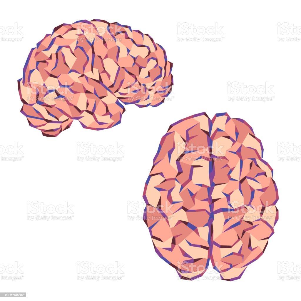 Brain color triangles - illustrazione arte vettoriale