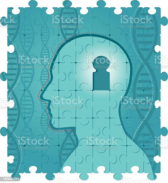 Brain dna vector id165694385?b=1&k=6&m=165694385&s=612x612&h=kafhsiemubkd31x4ab8kdipd57 dumkyhrj1oivlx o=