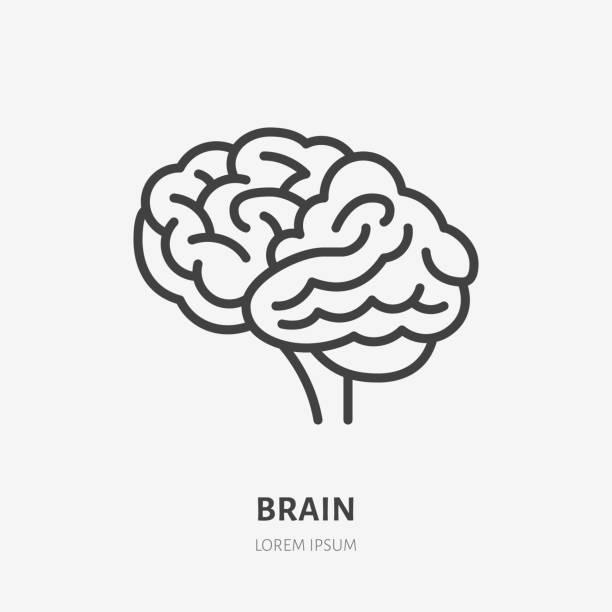 브레인 플랫 라인 아이콘입니다. 인간의 내부 장기의 벡터 얇은 그림, 신경 클리닉, 심리학에 대한 개요 그림 - brain stock illustrations