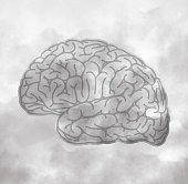 Brain Fog Mental Fatigue Memory Loss Confusion Concept Vector Illustration