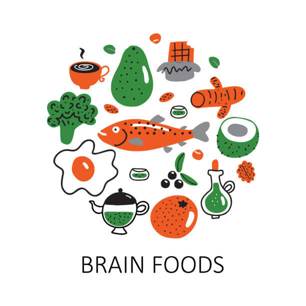 Brain foods. Vector cartoon illustration of different healthy food in circle. Brain foods. Vector cartoon illustration of different healthy food in circle avocado borders stock illustrations
