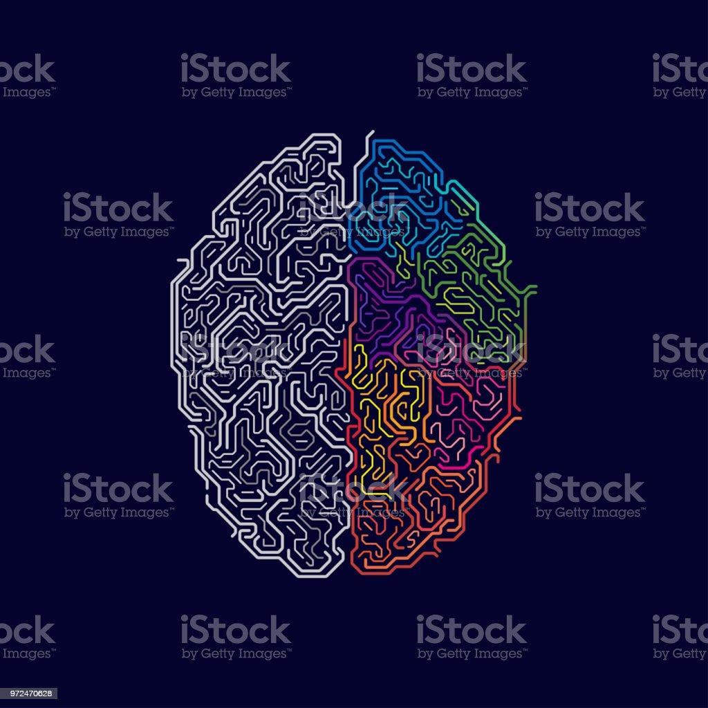 brain functions vector art illustration