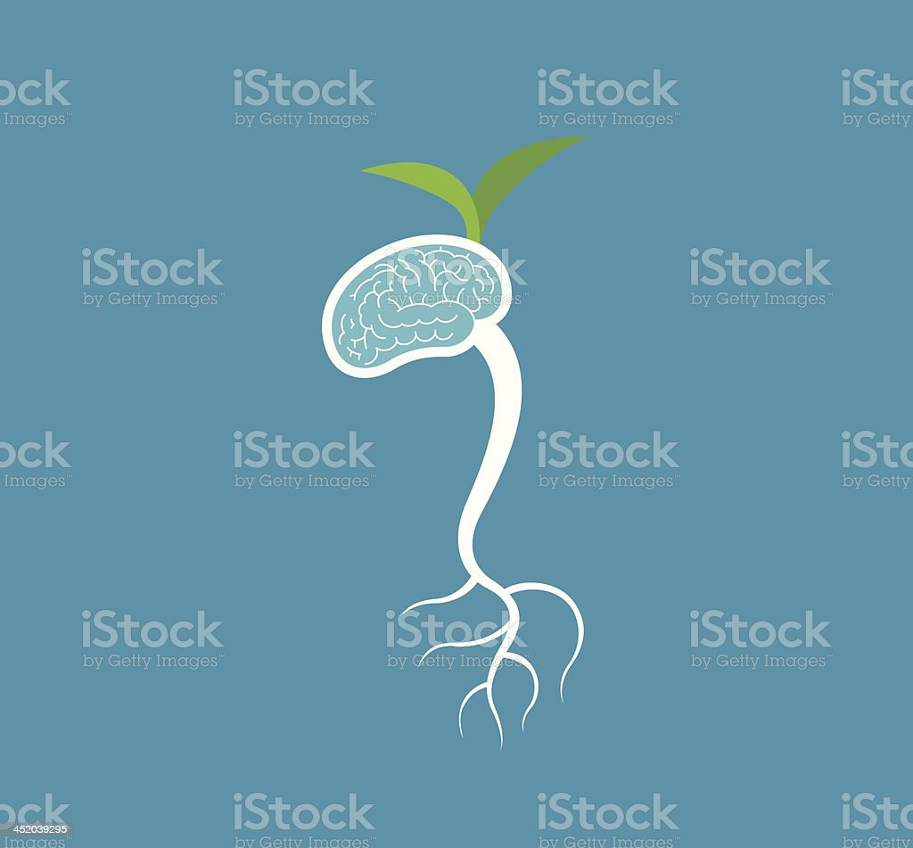 Brain Germinate royalty-free brain germinate stock vector art & more images of activity