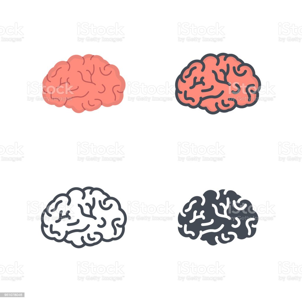 Brain human organs medicine vector flat line silhouette colored icon - Векторная графика Анатомия роялти-фри