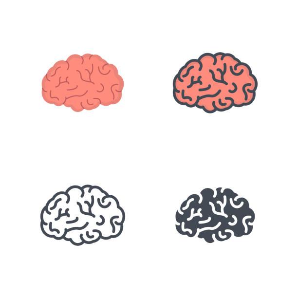 두뇌 인간 장기 의학 벡터 플랫 라인 실루엣 색된 아이콘 - brain stock illustrations