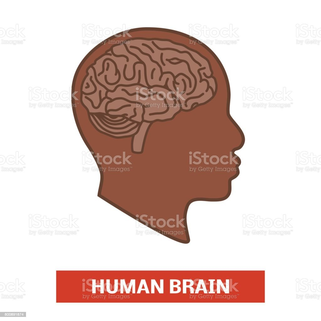 Brain in the head, black man or woman - illustrazione arte vettoriale