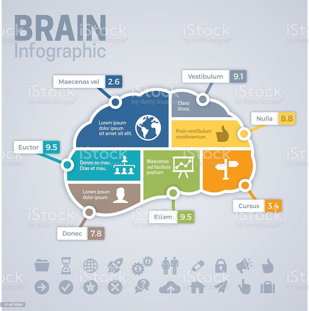 Brain Infographic Concept vector art illustration
