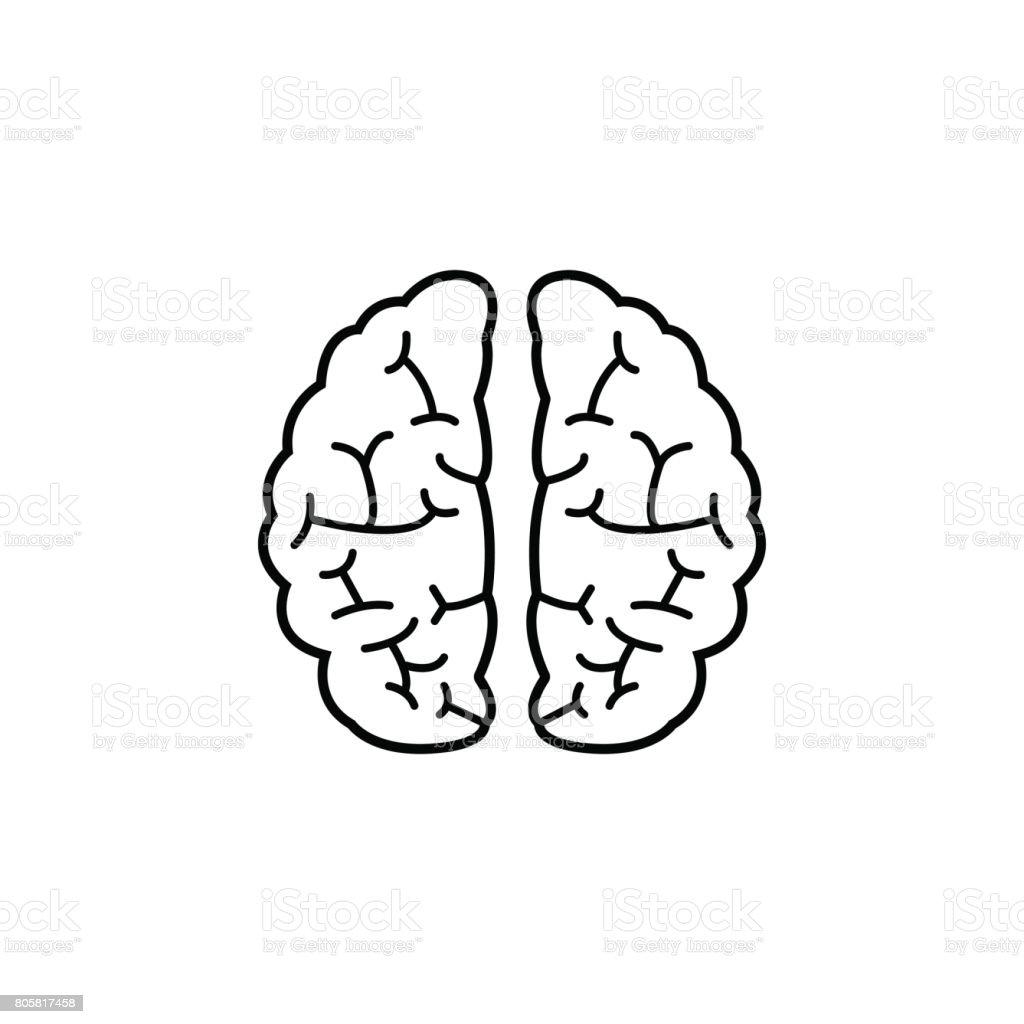 Brain line icon, Medical and school element - illustrazione arte vettoriale