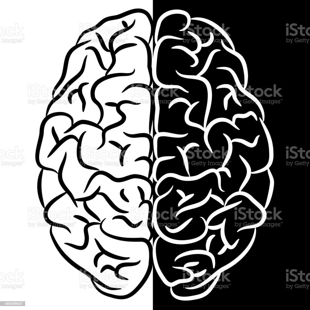 Forma del cervello - illustrazione arte vettoriale