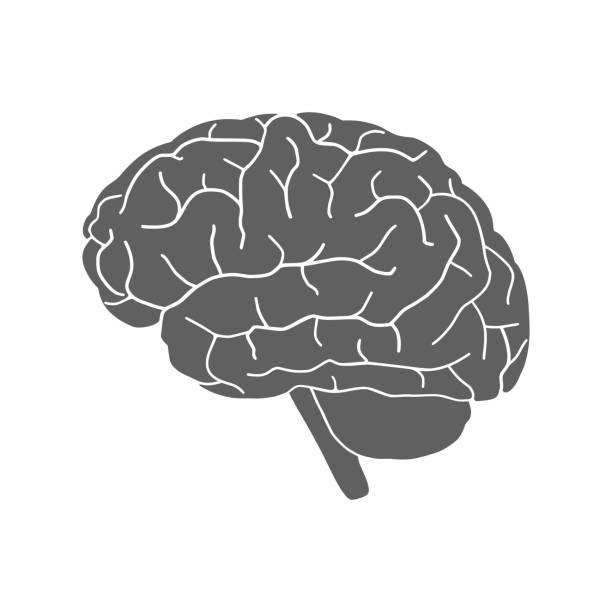 ilustrações de stock, clip art, desenhos animados e ícones de brain sign - brain
