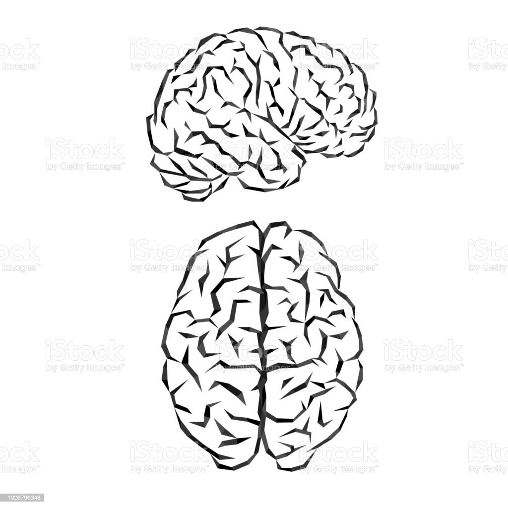 Brain silhouette outline - illustrazione arte vettoriale