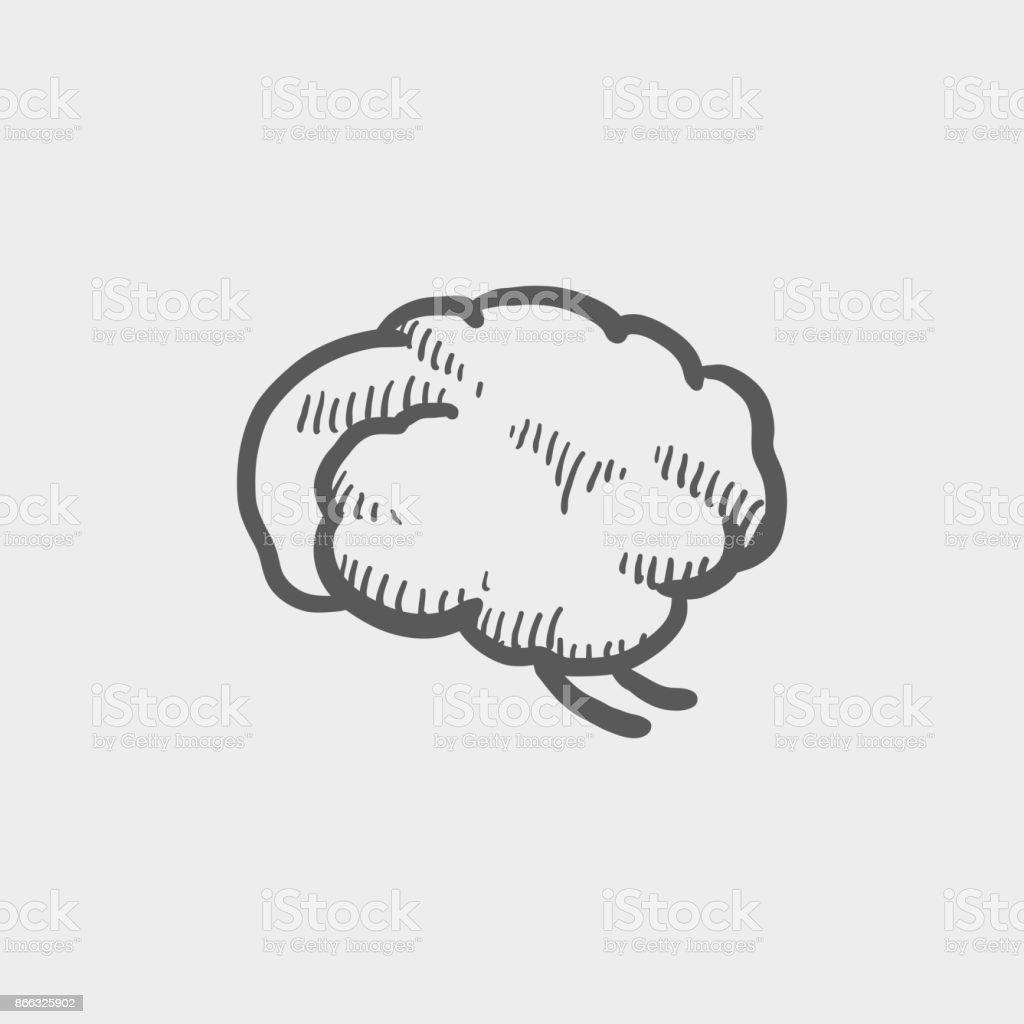 Ícone do cérebro esboço mão desenhada doodle - ilustração de arte em vetor