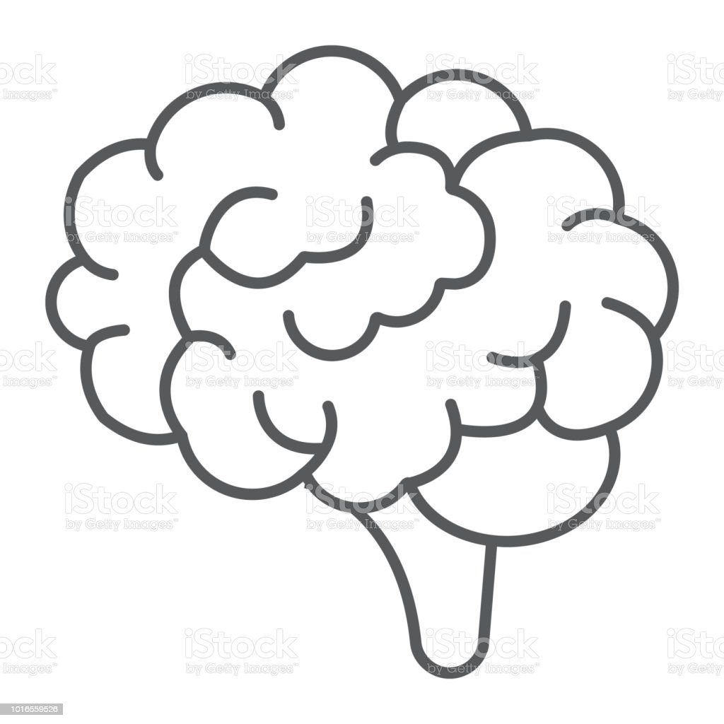 Brain thin line icon, anatomy and neurology, human organ sign, vector graphics, a linear pattern on a white background, eps 10. - illustrazione arte vettoriale