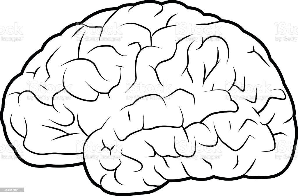 Brain royalty-free brain stock vector art & more images of alzheimer's disease