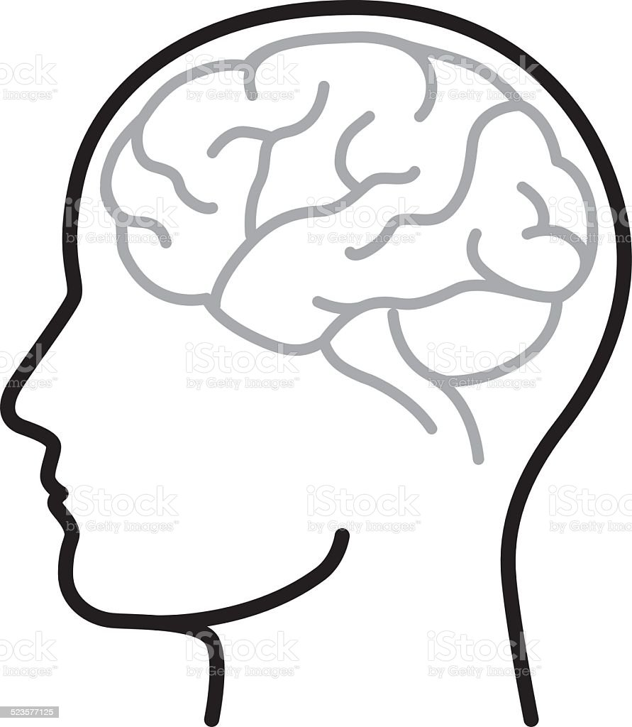 royalty free brain line drawings clip art vector images rh istockphoto com free clipart brain cartoon free brain clipart black and white