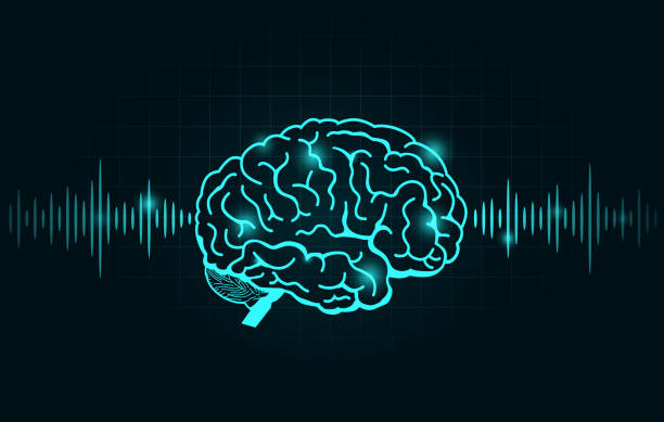 Brain wave and Frequency line on black graph. vector art illustration