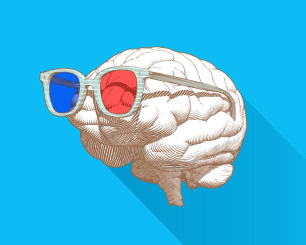 Brain with 3D glasses illustration isolated on blue BG Monochrome retro engraving human brain with 3D stereoscopic red and cyan glasses illustration in perspective side view isolated on blue background occipital lobe stock illustrations