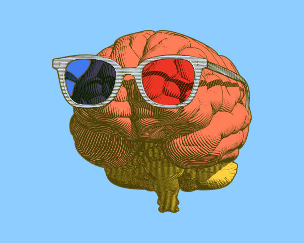 Brain with 3D glasses illustration isolated on blue BG Pastel retro engraving human brain with retro 3D glasses illustration in front view isolated on light blue background occipital lobe stock illustrations