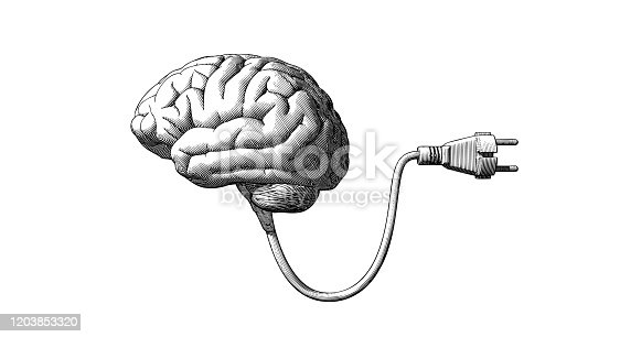 Monochrome vintage engraving drawing human brain connected with electric plug cable illustration isolated on white background