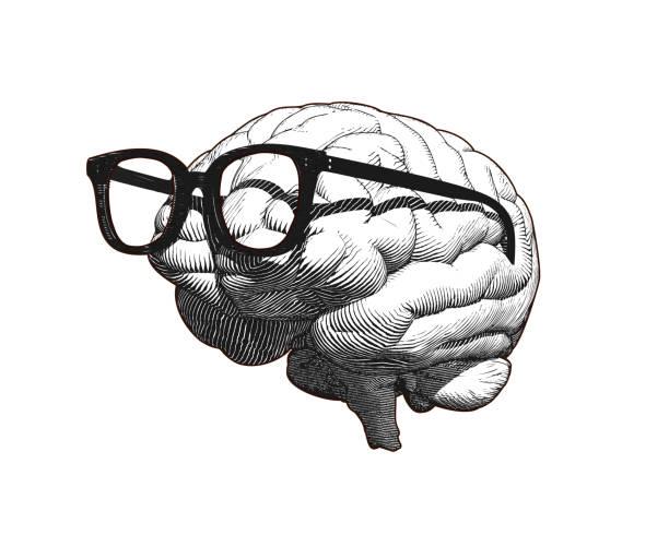 ilustraciones, imágenes clip art, dibujos animados e iconos de stock de cerebro con gafas dibujando ilustración aislada en bg blanco - brain