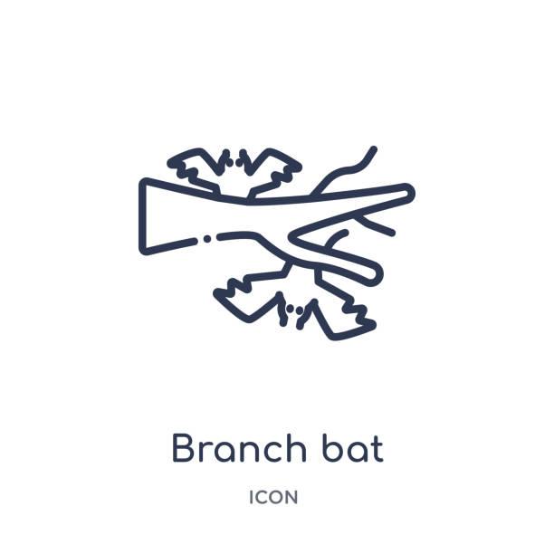 illustrations, cliparts, dessins animés et icônes de icône de chauve-souris de branche d'autres collections de contour. icône de chauve-souris de branche de ligne mince isolée sur le fond blanc. - cage animal nuit