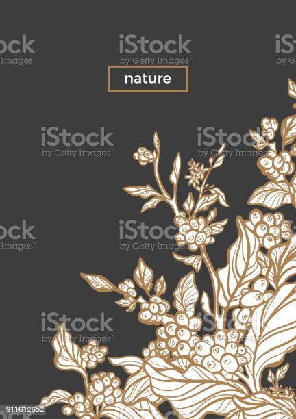 Branch of coffee vector template vector id911612652?b=1&k=6&m=911612652&s=612x612&h=i7bq1ohsjaq9uhgdhb9z96rmz2zh9hl47urziaekjso=