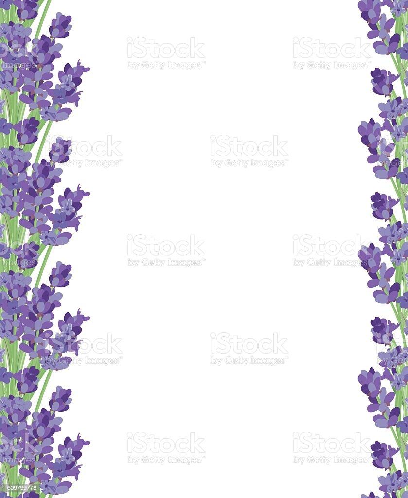 Ramo di fiori di lavanda illustrazione 609799778 istock for Fiori di lavanda
