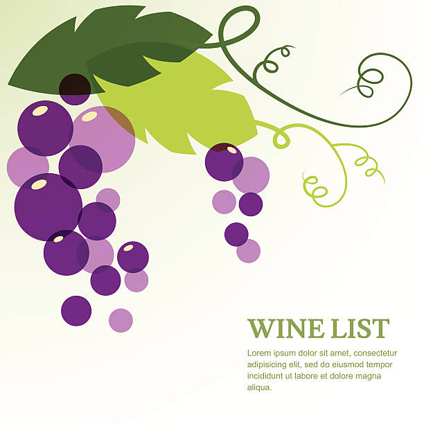 Branch of grape with leaves. Abstract vector background design template vector art illustration