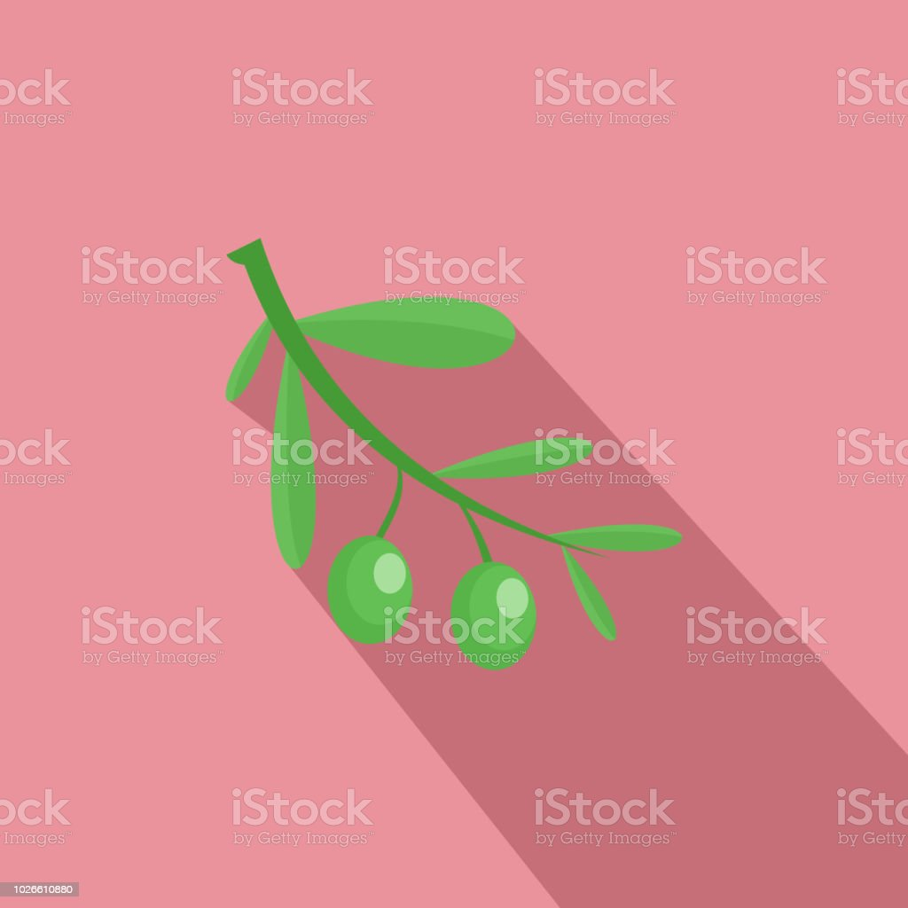 Branch of olives icon, flat style vector art illustration