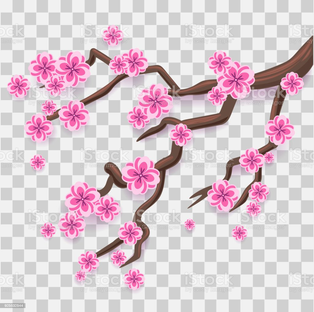 Branch Of Pink Sakura Japanese Cherry Tree Blossom Royalty Free