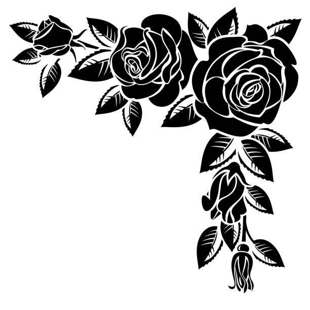 Floral Border Black White Roses Clip Art Illustrations ...