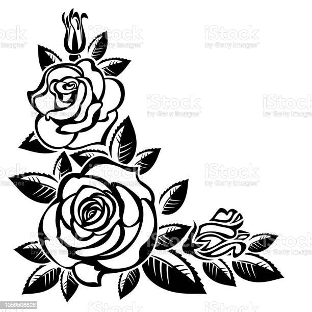 Branch of roses vector id1059508826?b=1&k=6&m=1059508826&s=612x612&h=tywitydel2jnmssvwj8l4rtyphxtqbh4grivnvgme s=