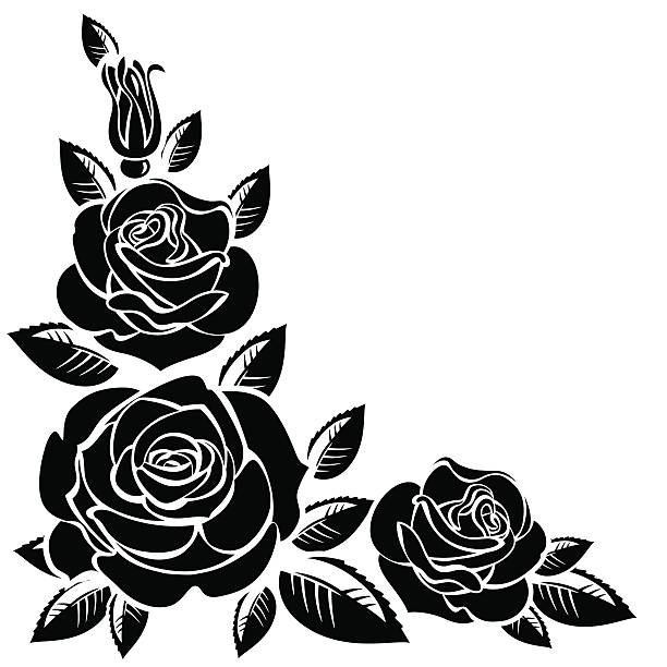 Black And White Rose Illustrations, Royalty-Free Vector Graphics & Clip Art - iStock