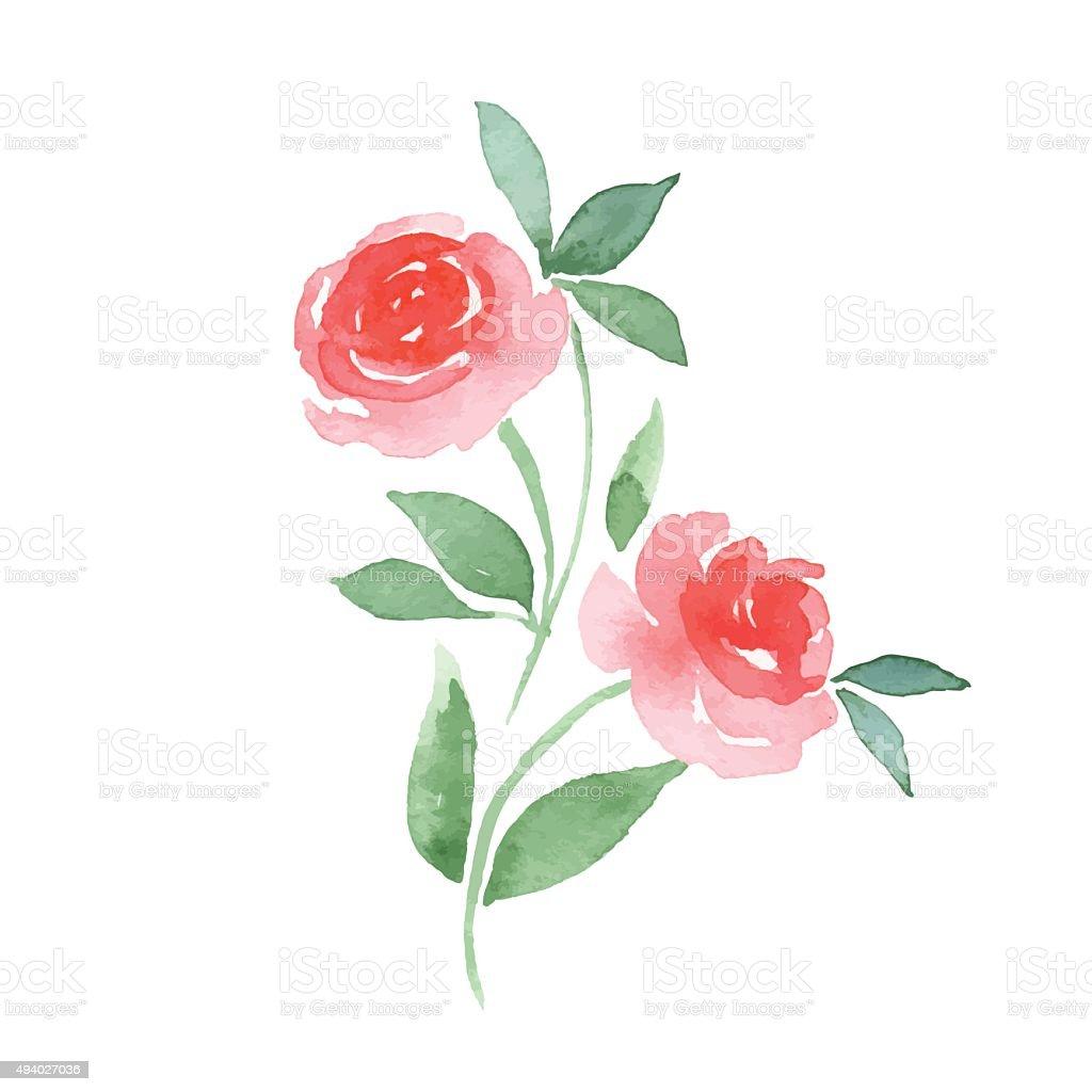 Branch of Roses. Vector vector art illustration