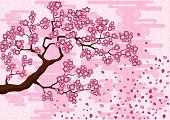 Abstract background with a branch of Japanese cherry tree.