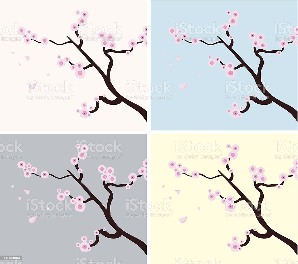 branch of sakura royalty-free stock vector art