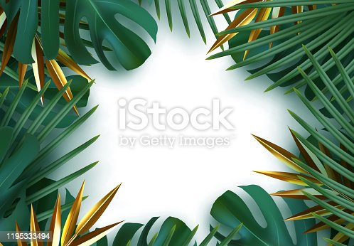 Branch palm realistic. Leaves and branches of palm trees. Tropical leaf background. Green foliage, tropic leaves pattern. frame white around blank space for text, flat lay, view from above. vector