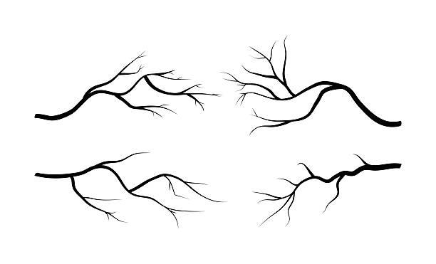 branch silhouette icon, symbol, design. vector vector art illustration