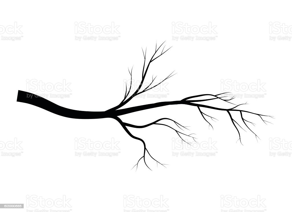 branch silhouette icon symbol design vector stock vector art more rh istockphoto com branch vector ban plus near mi branch victorian