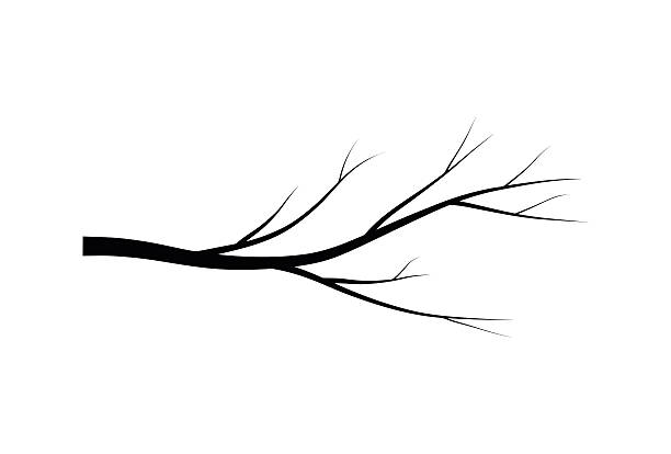 branch silhouette-symbol, symbol, design. vektor - winterruhe stock-grafiken, -clipart, -cartoons und -symbole