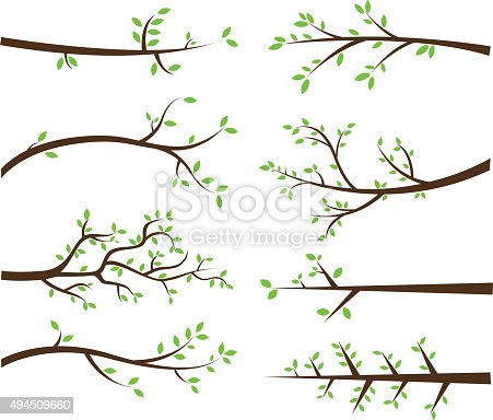 The vector for Branch Silhouettes Elements