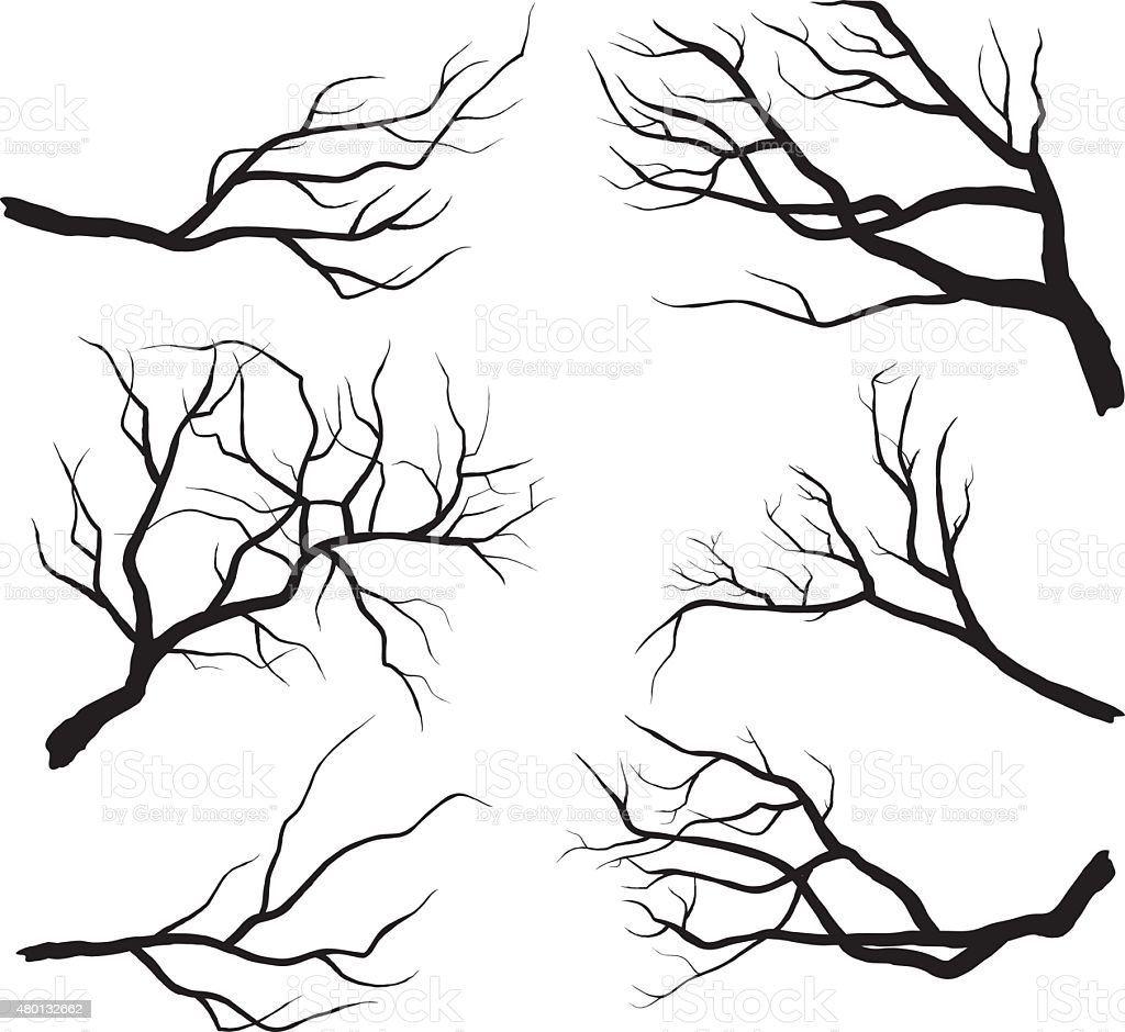 Branch Silhouettes vector art illustration