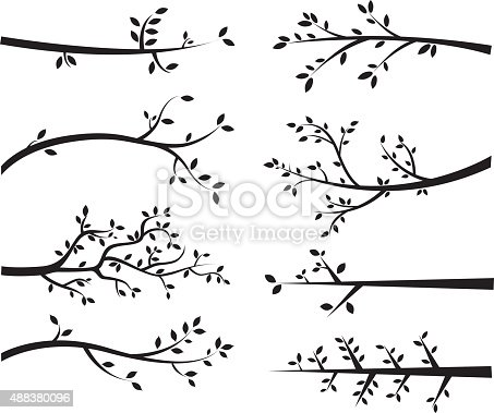 The vector for Branch Silhouettes