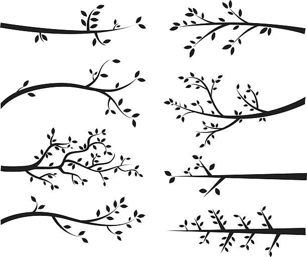gałąź sylwetki - gałąź część rośliny stock illustrations