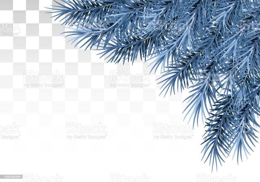 Grenar av tall i snö och frost. På en transparent bakgrund. Nyåret dekoration. Decor. Vektor. EPS-10. vektorkonstillustration