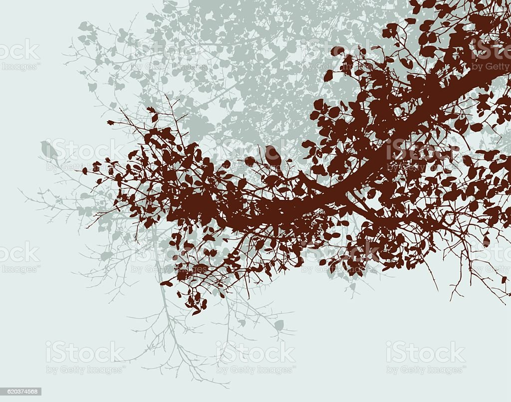 branches of the autumn trees branches of the autumn trees - arte vetorial de stock e mais imagens de abstrato royalty-free