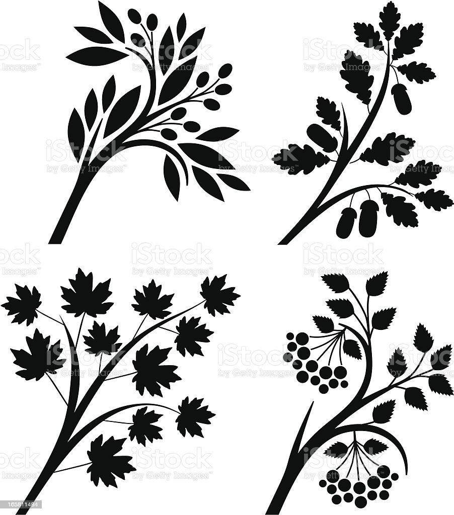 Branches royalty-free stock vector art