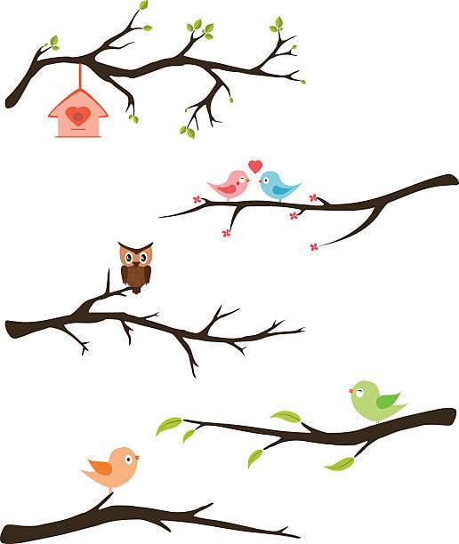 stockillustraties, clipart, cartoons en iconen met branches with birds vector - vogel herfst