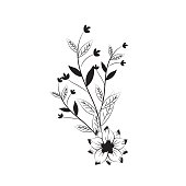 branches with leaves and flowers decoration vector illustration